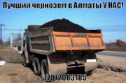 Чернозем горный